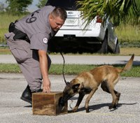 6 steps to becoming a correctional K-9 handler