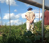 Wis. inmates trade cells for seeds