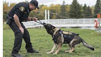 Utah lawmakers consider more K-9 training requirements after audit