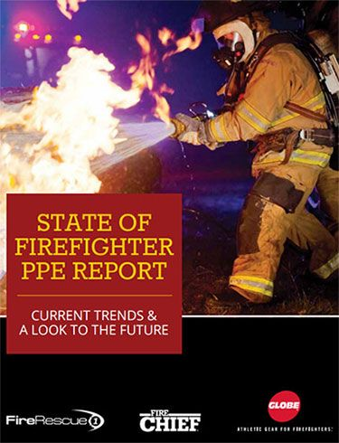 Download the 2015 State of PPE Report