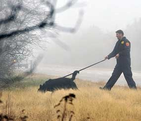 An officer from the Suffolk County Police Department's K-9 Unit uses a dog to search through the brush along the median of Ocean Parkway, near Oak Beach in Long Island, N.Y. A year ago, the first of 10 sets of human remains were found strewn in the thicket along the seven-mile stretch of highway. But as the anniversary of that first discovery occurs on Dec. 11, law enforcement appears no closer to catching the serial killer, or killers.