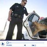 Police Videos