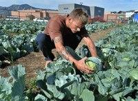 Master gardeners teach Boulder County Jail inmates