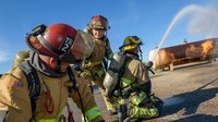 Ariz. researchers studying stress, cancer risk, reproductive health of female FFs