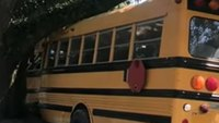 Police: 11-year-old steals school bus, leads police on pursuit