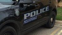 Video: 2 Mich. cops hurt in multi-city stolen rig pursuit