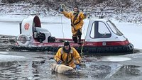 Mass. FFs usehovercraft torescue dog that fell through ice