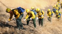 CAL FIRE announces $43M in grants to fund 66 fire prevention projects