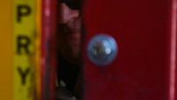 Training day: Breaching the door