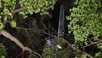 Wis. firefighters rescue 3 from plane crashed in forest
