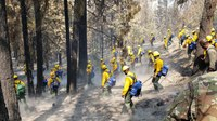 August Complex now California's largest-ever wildfire