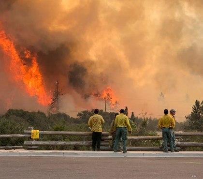 Firefighter dies battling Calif. wildfire sparked by gender reveal