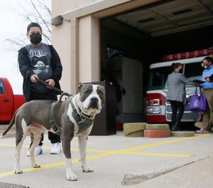 Astro, a 1-year-old rescue dog, received a medal from the El Paso Fire Department for helping save his owner's life.