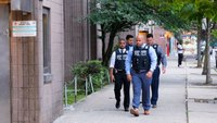 NYPD officer shot by BB gun; second attack in two days