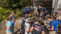 Fla. fire crews help rescue injured manatee