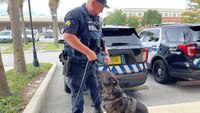 Proposed law to care for retired K-9s would be 'huge,' Fla. cops say