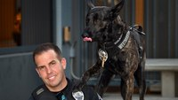 A California K-9 cop may have finally found his perfect match