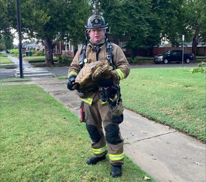 """Along with the parrot, firefighters said they found a thankful tortoise who was """"unable to holler"""" for a rescue."""