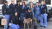 RI bill would allow injured K-9s to reach vet by ambulance