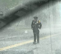 Photos: Officer helps turtle cross road in torrential downpour
