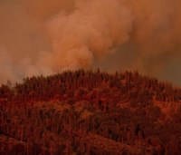 2 more firefighters hurt while battling Calif. forest fire