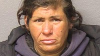Calif. woman accused of arson in blaze that injured firefighter