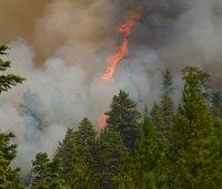 Montana wildfire grows, destroys 2 homes