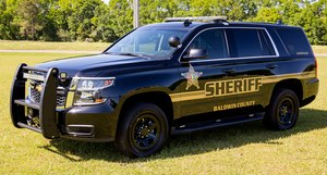 Image: Baldwin County Sherff's Office Facebook page
