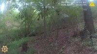 Video: K-9 finds missing Ga. woman in ravine as creek rises