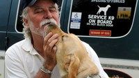 Service dogs for local veterans are being trained in NY county jail