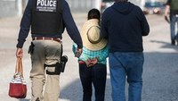 Immigration agents arrest 114 in landscaper sting