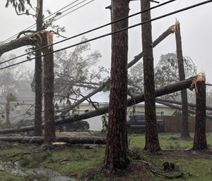 After carving an agonizing path of destruction across the Florida Panhandle, Georgia and southeastern Alabama for nearly 10 hours and killing at least two people, Hurricane Michael finally slowed to a tropical storm at midnight and continued to weaken early Thursday.
