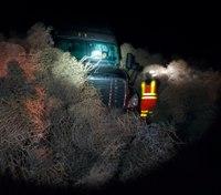 Giant tumbleweeds trap cars on Washington state highway