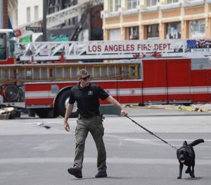 A search dog is used at the scene of a fire and explosion Monday, May 18, 2020, in Los Angeles. The Fire Department was at the nondescript commercial building late Saturday afternoon when there was a thunderous explosion that sent firefighters scrambling through searing flames to get out of the building. Twelve firefighters were injured. All are expected to survive. (AP Photo/Marcio Jose Sanchez)