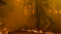5 dead as N. California wildfires rage on