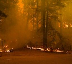 A property is ravaged by the CZU August Lightning Complex Fire, Thursday, Aug. 20, 2020, in Bonny Doon, Calif. (AP Photo/Marcio Jose Sanchez)