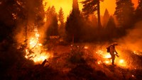 'A rapidly evolving, intensifying natural disaster': Wash. heads into wildfire season with record number of early fires