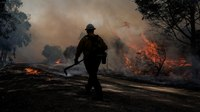 2 Calif. firefighters injured in burnover are 'fighting for their lives,' chief says