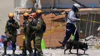 Search and rescue crews on lookout for pets in Florida condo building collapse