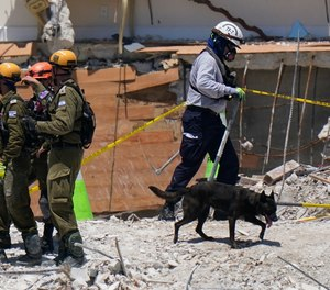A dog aiding in the search walks past a team of search and rescue personnel atop the rubble at the Champlain Towers South condominium in Surfside, Florida.