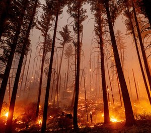 The Dixie Fire burns along a hillside near Taylorsville in Plumas County, Calif., on Friday, Aug. 13, 2021. The fire destroyed multiple homes in the area earlier in the day.