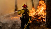 How to become a wildland firefighter