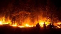 Biden to survey Calif. wildfire damage this week