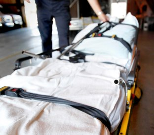 The tools and resources you need for bariatric response, transport