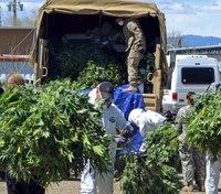 3 hidden dangers found in marijuana grow houses