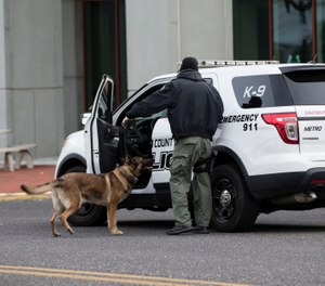 The first step of procuring K-9 equipment is to ascertain what the end use of the team will be. (AP Photo/Matt Rourke)