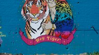 EMS Superlatives: Tiger King Edition