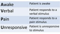 Use AVPU scale to determine a patient's level of consciousness