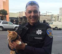 SF cops use cat to coax suicidal man off ledge