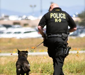 In preparingto become a K-9 handler, you need to determine what makes you the best candidate for the job.